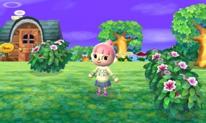 animal-crossing-new-leaf_0900145343