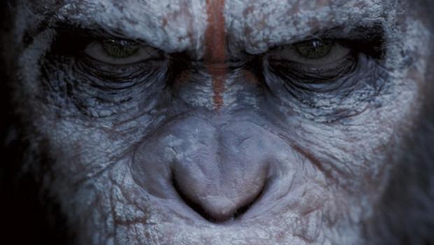 affiche-preventive-us-du-film-la-planete-des-singes-l-affrontement-11053107roerw_1713
