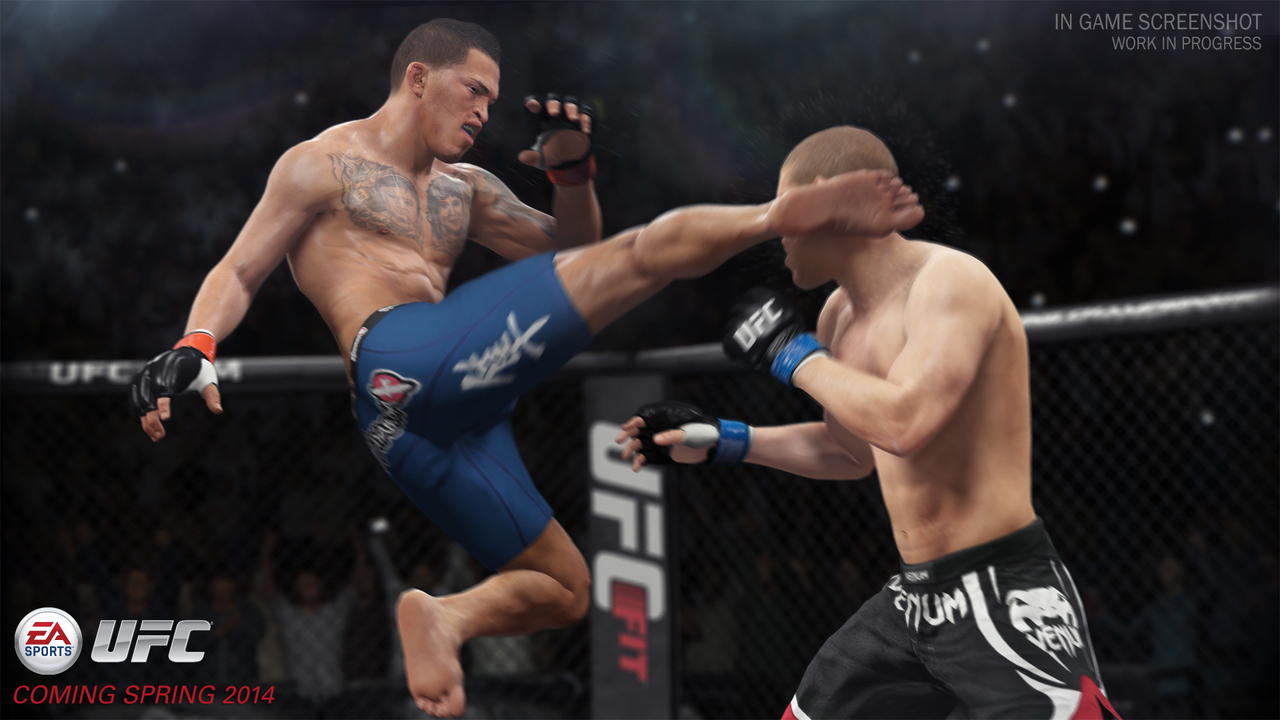 ea-sports-ufc-playstation-4-ps4-1392051329-015