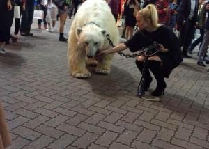 WTF: Un ours polaire à Shibuya…
